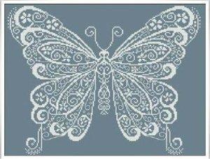 AAN butterfly
